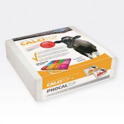 CALCITOP Calcium Bolus - 12 Boli
