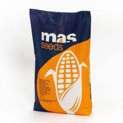 MAS 12.H
