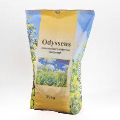 Gelbsenf Odysseus nematodenresistent