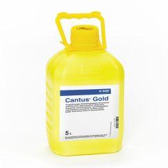 Cantus Gold