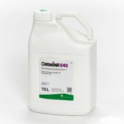 Carmina 640